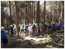 林業体験ツアーの写真。