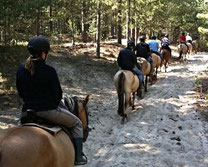 Balade à cheval avec les Henson dans le domaine du Marquenterre