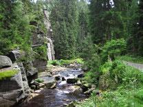 Wanderung im Schwarzwassertal
