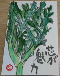 49 春菊