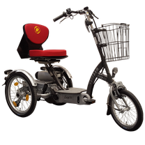 Van Raam EasyGo Scooter-Dreirad Beratung, Probefahrt und kaufen in Saarbrücken
