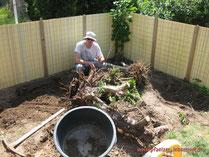 große Wurzeln entfernen Fundament Holzhaus
