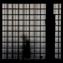 Sven Kierst: Shadowman & Coffeecup, 2014