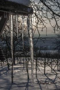 Eiszapfen an einer Gartenlaube im Gegenlicht. Siegfried Beiser Photography.