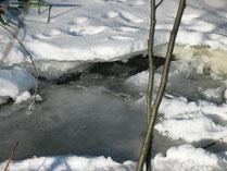 Winter im Voralbland