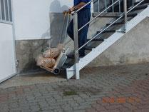 con  Dondolino porti su e giù tutto cosa vuoi sulle scale