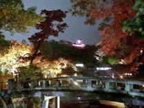 滋賀県紅葉ランキング 4位「名勝 玄宮園」