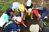 子供達が自分で野菜を植えている。収穫が楽しみ。