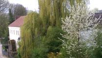 Garten Winklhofer