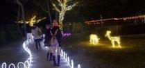 スマホ集客ディレクター 2013年クリスマス龍