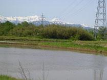 田植え前。雪解けの山