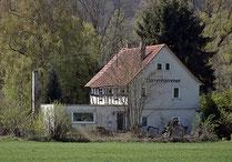 Dammhammer bei Brungershausen