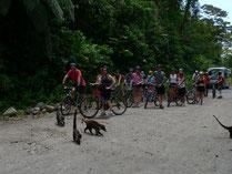 Excursión Bicicleta de Montaña Volcán Arenal