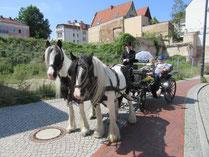 Hochzeitskutsche in Mecklenburg-Vorpommern; Hochzeitskutsche in Rostock