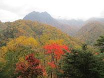 Photo of Nishizawa Valley 3