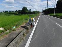 道の日ボランティア活動