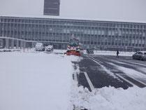 庁舎除雪作業