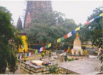 Indien - Bothgaya - Tempel des Mahabodhi zum Bodhi-Baum, dem Baum wo Buddha Erleuchtung erlangte