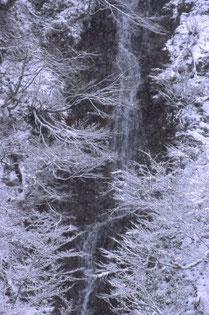 幻の滝 鈴木十美栄