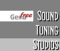 Gemafreie Musik mit Lizenz kostengünstig kaufen...