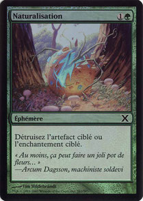 Naturalize French Tenth Edition foil