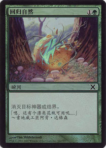 Naturalize Simplified Chinese Tenth Edition foil