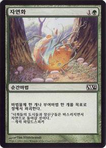 Naturalize Korean Magic 2012
