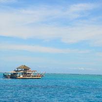 Fiji July_17