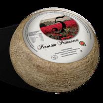 maremma sheep sheep's cheese dairy pecorino caseificio tuscany tuscan spadi follonica block 1200g 1.2kg italian origin milk italy matured aged primavera classic
