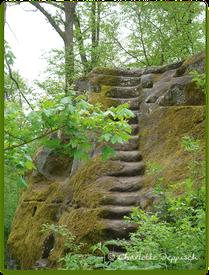 Charlotte Deppisch: Foto alte Treppe
