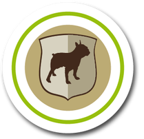 Tier und Hunde Versicherungen