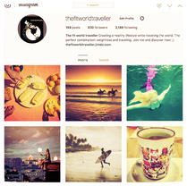 The fit world traveller's Instagram