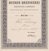 Stamm-Anteil der Buirer Brennerei vereinigter Landwirte eG (Buir, jetzt Kerpen)