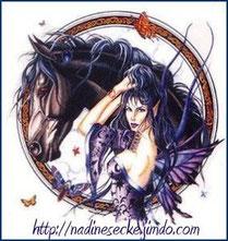 Pferde Spruche Die Siegel Katzens Jimdo Page