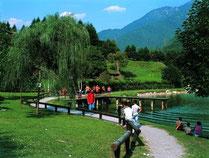 percorso lago roncone
