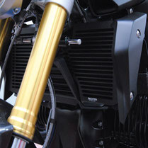 Cooler guard BMW R1200R LC