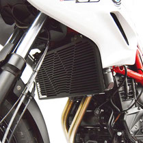 Oil cooler protector, Oil filter protector F700GS