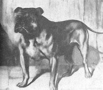 King Dick 1858
