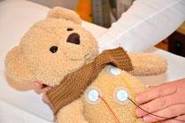 Bär beim EKG