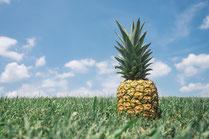 Ananas auf der Wiese mit blauem Himmel