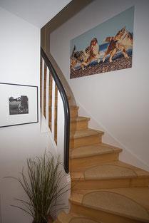 Eingangsbereich Studio Mirsberger tierpfoto