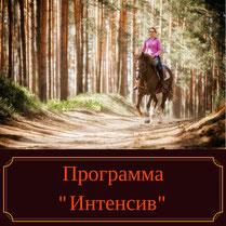 Конные прогулки, уроки верховой езды, экскурсия на конюшню, каникулы