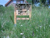 Foto: H. Schmiers, Wildbienenwand