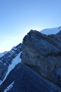 Jungfrau, Rotbrettgrat, Rotbrättgrat, Silberhorn, Silberhornsattel, Fellenbergflüeli