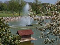 Auch die Enten haben hier eine Heimat! - © Golfer's Club Bad Überkingen