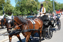 A horse carriage called Fiaker in Vienna