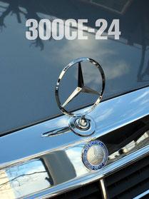 300CE-24V Mascot