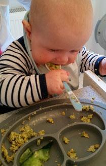 Baby-led Weaning Woche 2 - Zwischenbilanz