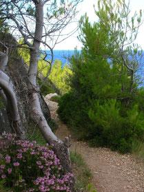 Mallorca Trekking Wandern Natur