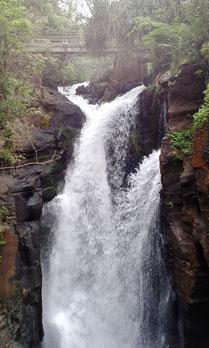 Iguazu - Argentinier Teil